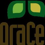 Grace Community Church - Newton, KS